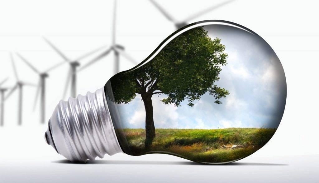 La continua crescita della green economy